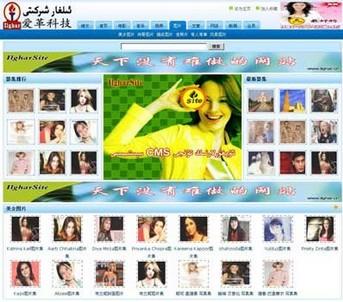 爱革CMS 图片网站模板 W040001 - 源码下载 -六神源码网