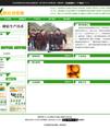 绿色柑橘研究所网站模板 v8 - 源码下载 -六神源码网