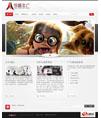 黑色文化传媒公司网站模板 - 源码下载 -六神源码网